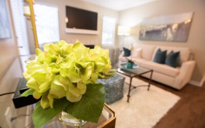 Is a Studio Apartment Right for You?